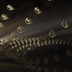 SAB Miller Video Branding