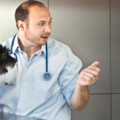 The British Veterinary Association Launch 'Veterinary Visions' programme